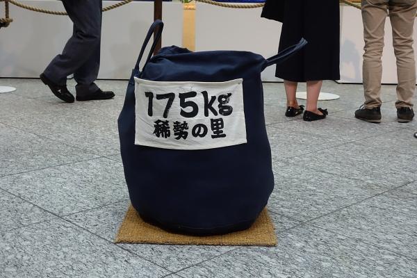 2016081505.jpg