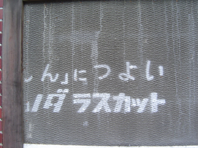 DSC04868.jpg