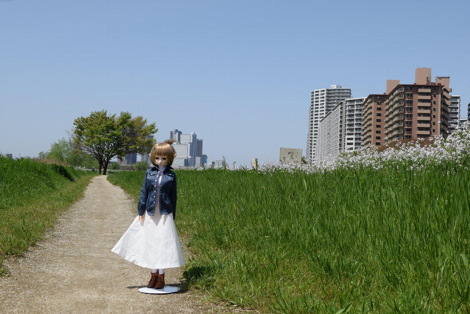 doll_3284.jpg