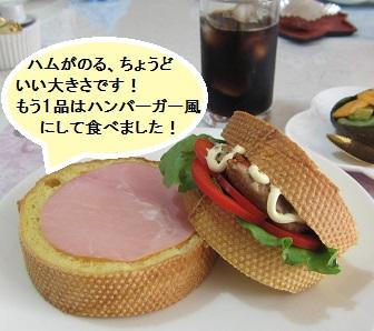 160809 試食(飯嶋・羽成・江口)