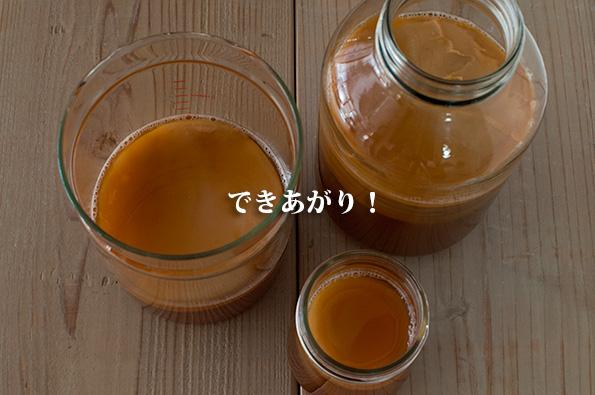 紅茶キノコまとめブログ コンブチャの株分け、作り方、効能効果と注意点とは