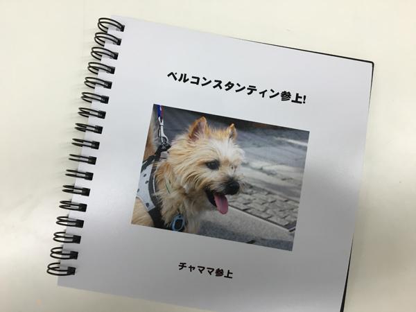 12フォトブック のコピー