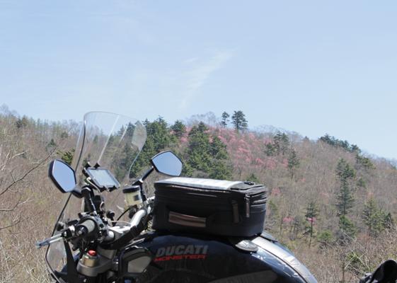 中禅寺湖 山桜