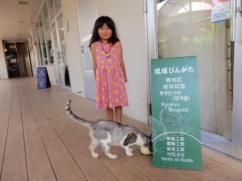 沖縄8-13