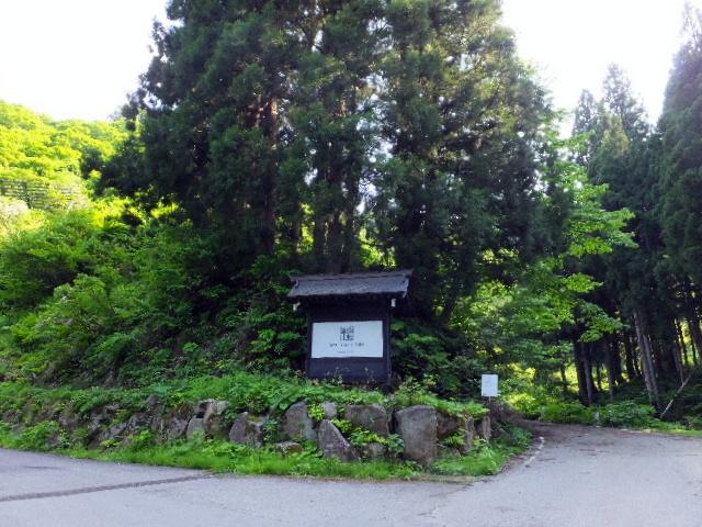 satoyama0001.jpg
