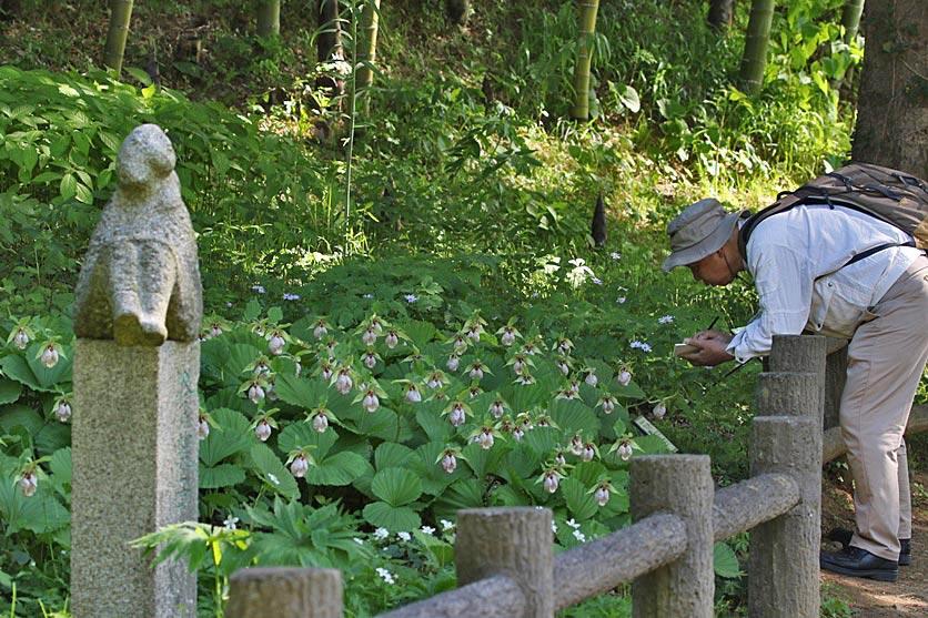 kumagai9-570.jpg
