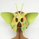 昆虫カブリモノ蝶々