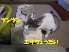blog160809_1.jpg