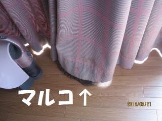 blog160928_2.jpg