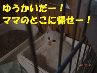 blog161008_1.jpg