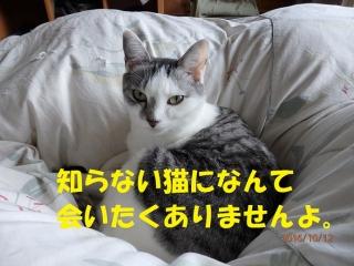 blog161012_4.jpg
