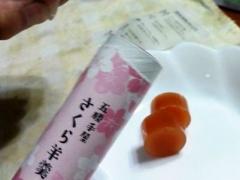 0709yokan04.jpg