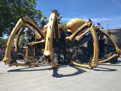 巨大クモ01