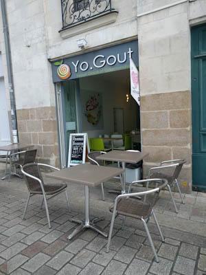 YoGout01