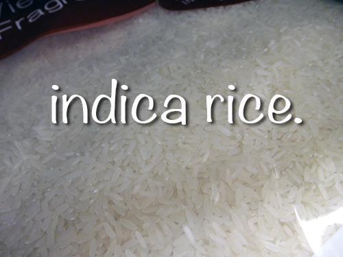 201606HongKong_indica_rice-5.jpg
