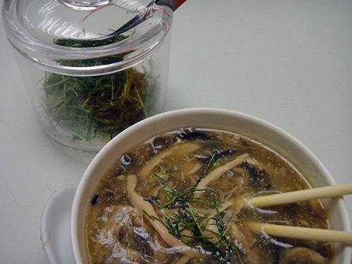 201606snake_soup_HongKong-6.jpg