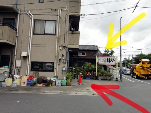 201607Hayashiya_Misato-6.jpg