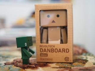 danbo-006