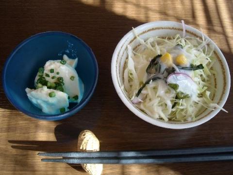 川崎漁港・H27・10 サラダ