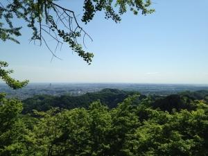 高尾山 (10)