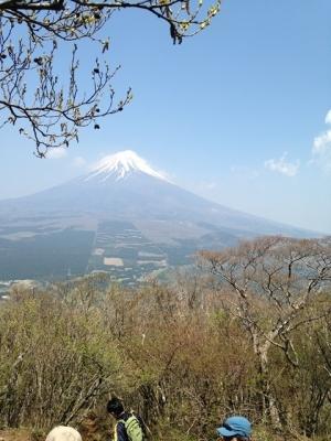 愛鷹山 (4)