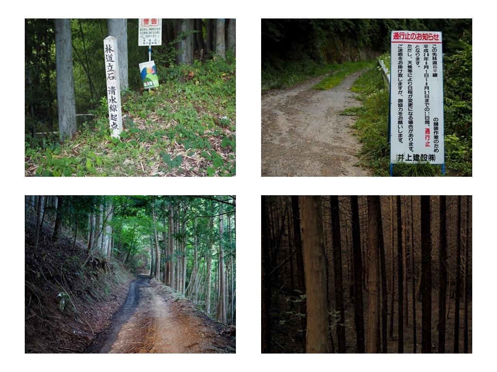 20160813011w.jpg