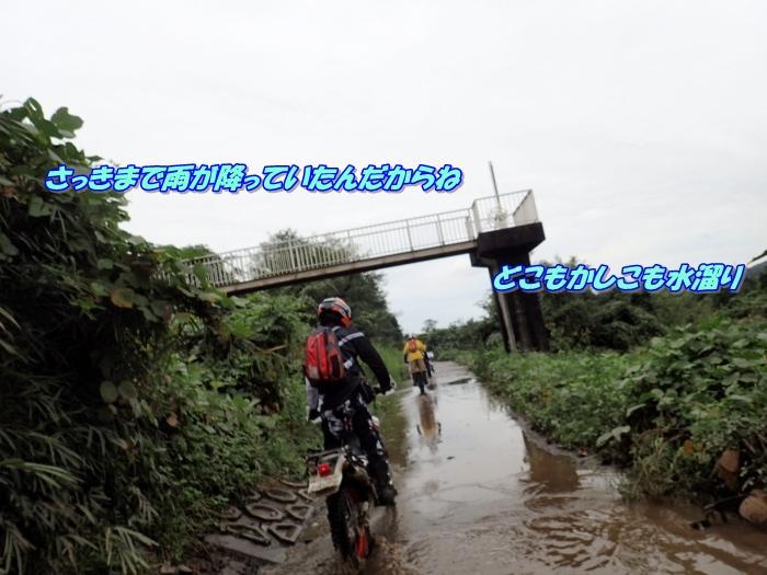 PA090151a.jpg