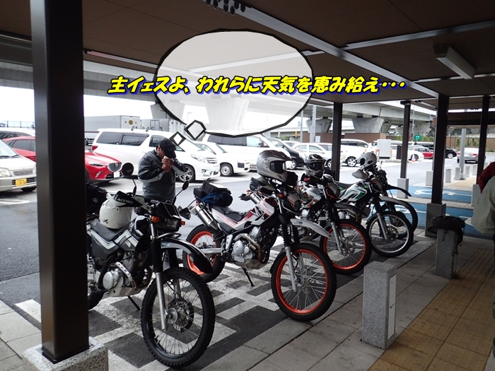 aP8280149a.jpg