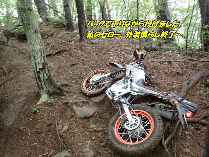 abP8280181.jpg