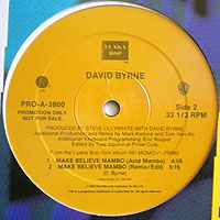 DavidByrne-MakeBelieve200_20160422205431db8.jpg