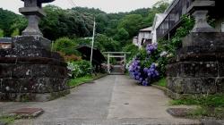 20160625鎌倉散歩1