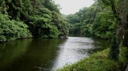 20160625鎌倉散歩8