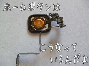 1610105.jpg