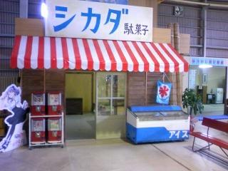 シカダ駄菓子 1