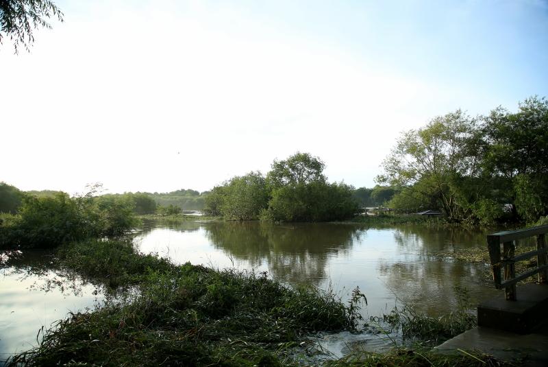 060 増水した川 10001