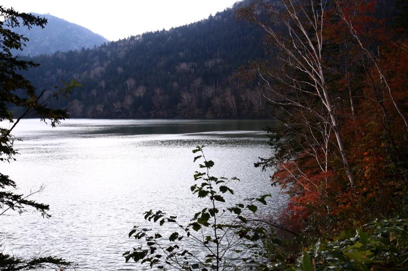 053 然別湖畔の紅葉0001