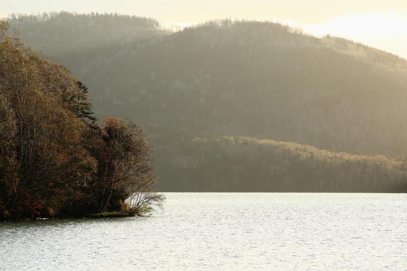 298 然別湖畔の朝0001
