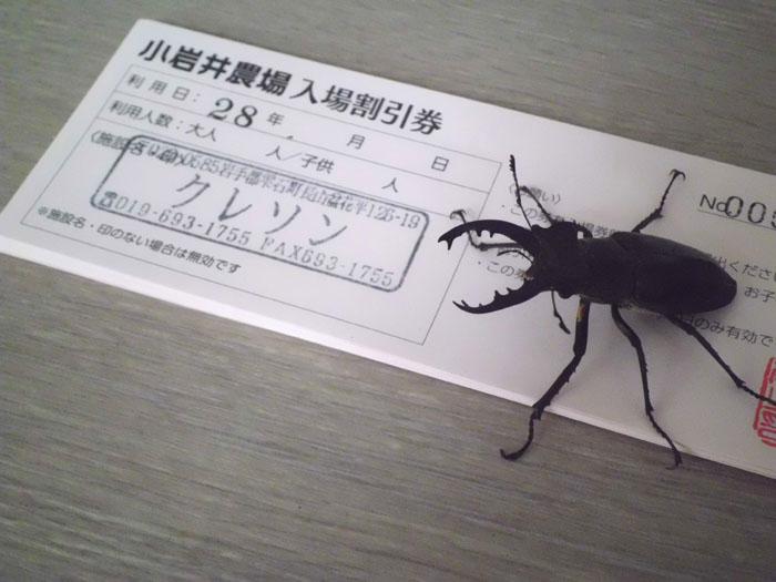 miyamakuwagata2016