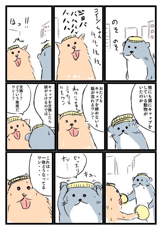 キャップ動物