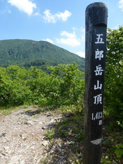 五郎岳の山頂を示す標高1,413mの木標