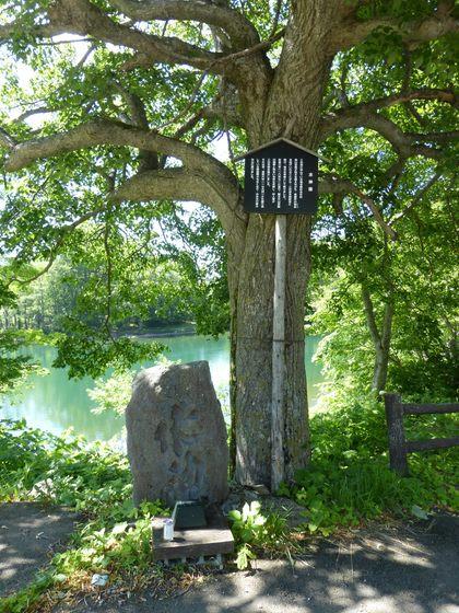 ドッコ沼の水神様伝説と石碑