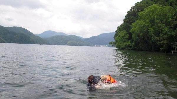 初泳ぎ18