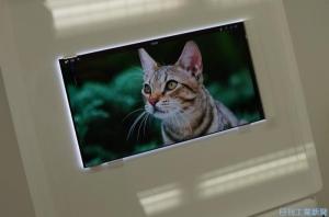 JDI_4K_LCD-panel_image1.jpg