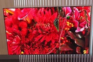 Panasonic_IFA2016_OLED-TV_proto-type_image1.jpg