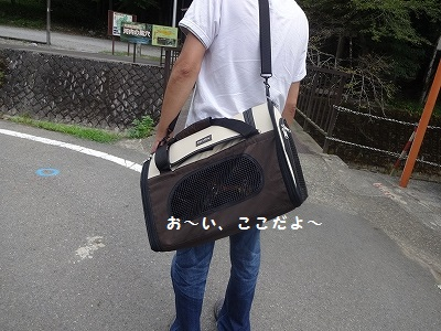 s-河内風穴 (5)
