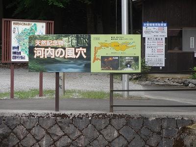 s-河内風穴 (6)