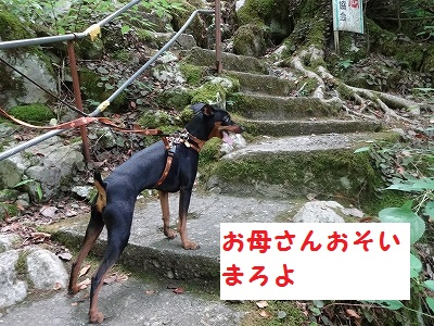 s-河内風穴 (12)