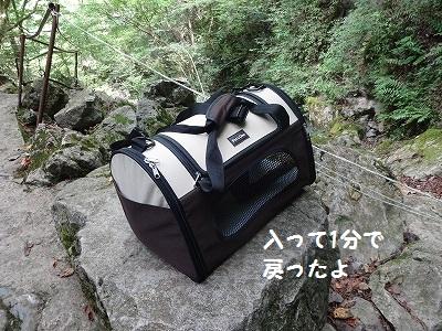 s-河内風穴 (18)