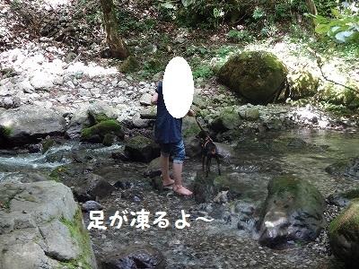 s-河内風穴 (24)