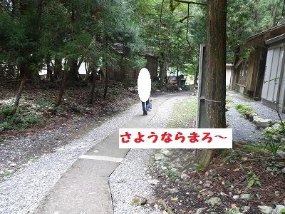 s-河内風穴 (35)
